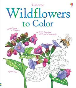 Picture of Wildflowers to Color