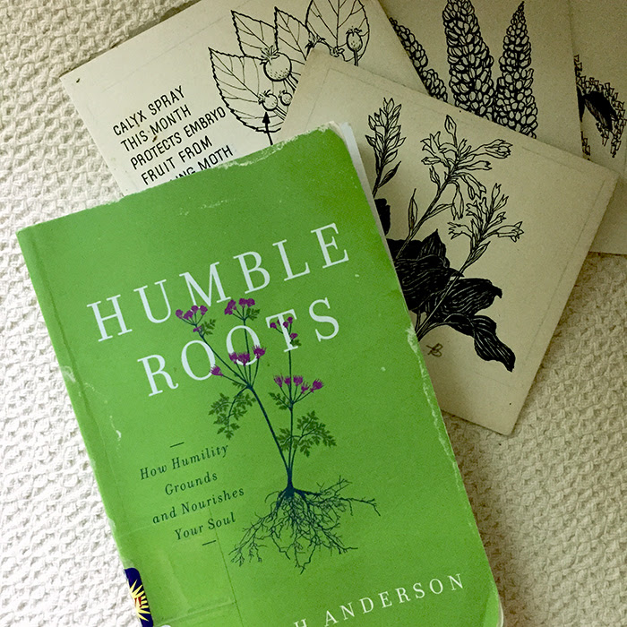 Favorite Quotes From Humble Roots Honeysalt
