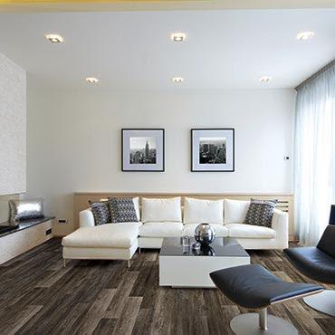 Living Rooms Vinyl Flooring Remodeling Pictures And Ideas