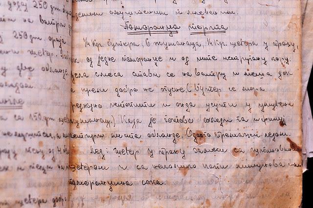 pomorandza rukopis