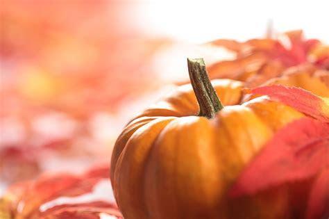 Wallpapers Autumn Pumpkin Food Vegetables