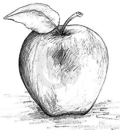 apple black  white sketch arts crafts