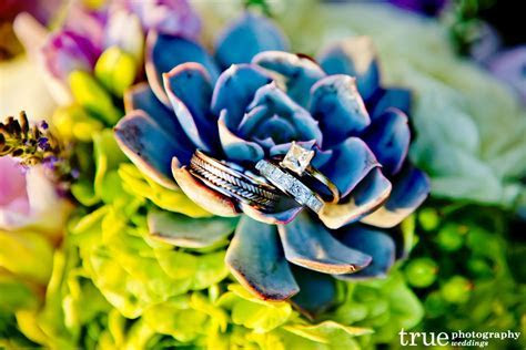 Succulents in Bridal Bouquets and Decor   2013 Floral Trends