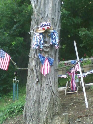 american tree