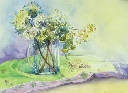 Still Life with Hydrangeas - watercolor