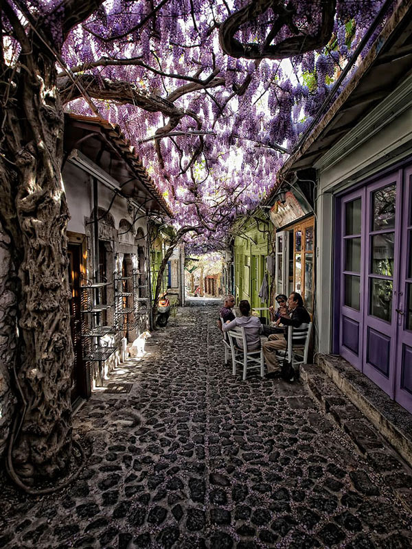 TravelPass.gr - Μαγευτική ατμόσφαιρα σε ανθισμένα σοκάκια του κόσμου