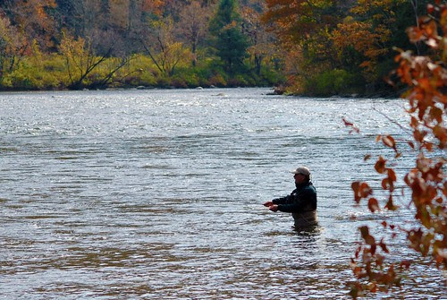 Fly-Fisherman on the Housatonic River