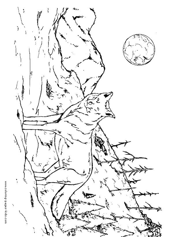 Printable Wolf Coloring Pages For Adults - Coloring And Drawing