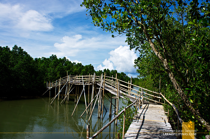 Rickety Pathways at Kalibo's Bakhawan Eco Park