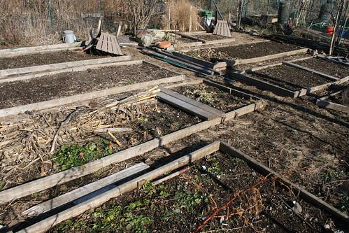 garden plot 095