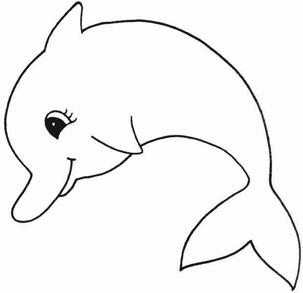malvorlagen delfine gratis  aglhk