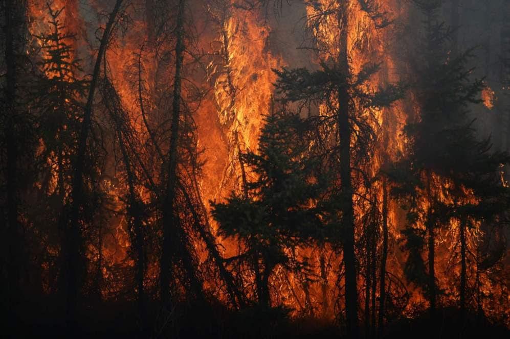 Las inusuales altas temperaturas de la región junto a fuertes rachas de viento han provocado que las gigantescas llamas en los bosques que rodean la ciudad se extendiesen hacia el centro.