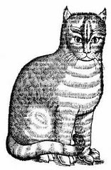 El Gato Romano