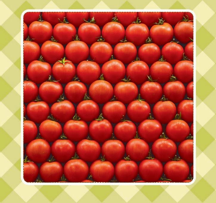 filas de tomate rojo