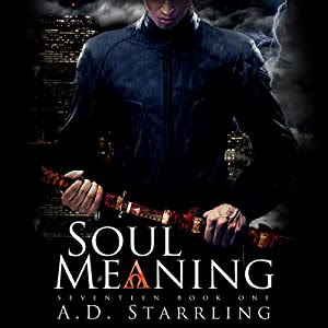 Soul Meaning Audiobook