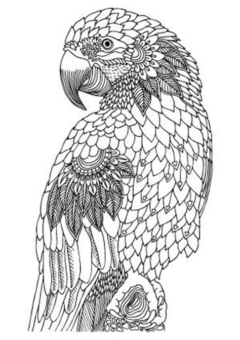 Easy Wild Animals Coloring Pages