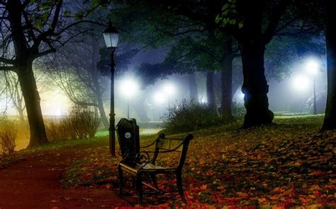 nature landscape mist bench lantern park path grass