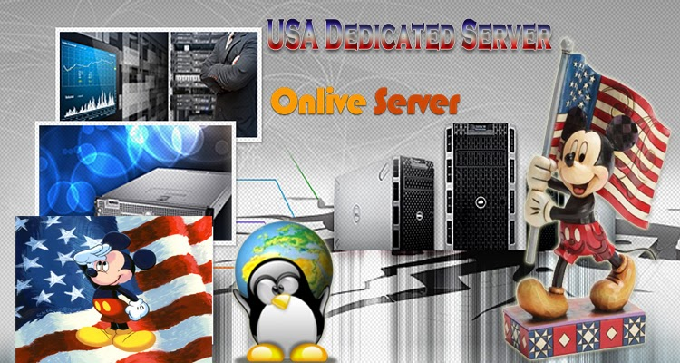 Dedicated server dallas k y