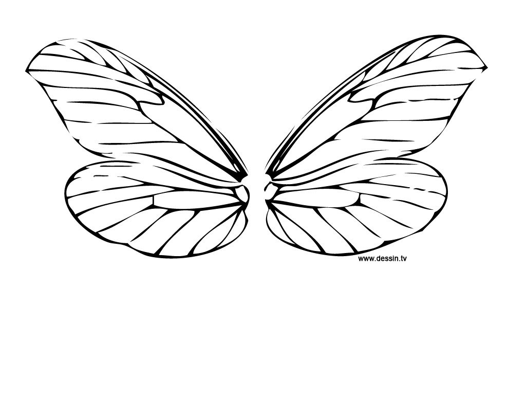 6600 Colouring Pages Butterfly Wings Download Free Images