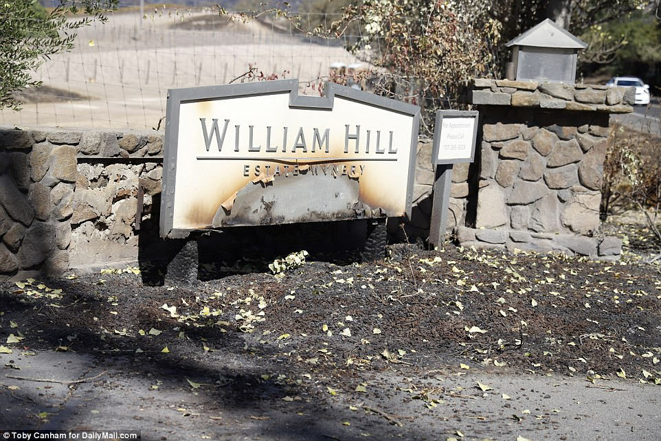 Nearby wineries such as the vast William Hill estate were also affected by the wildfires but did not suffer the same level of damage