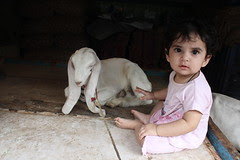 Nerjis Asif Shakir and the Long Eared Goat by firoze shakir photographerno1