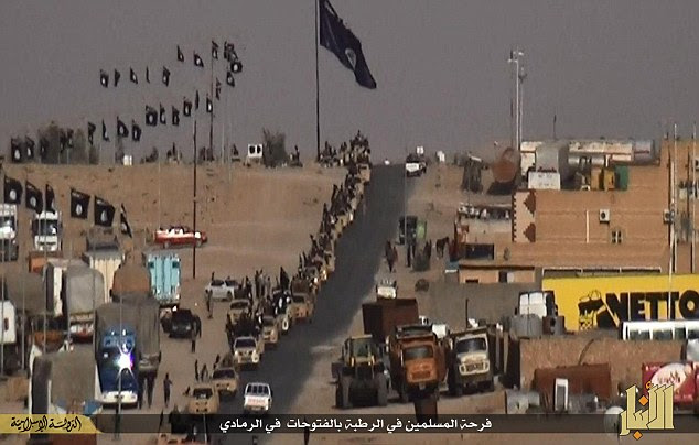 Show of strength: ISIS flags line the streets of Ramadi as a procession of militants - riding on the backs of Toyota Land Cruisers - parade through the city