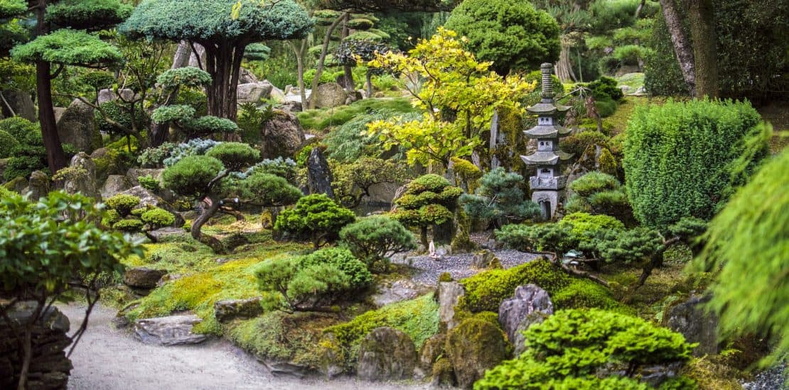 Japanese Garden Designs for Small Spaces 1110x550