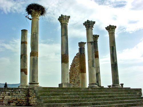2267-VOLUBILIS-Colonnades-du-Capitole.jpg