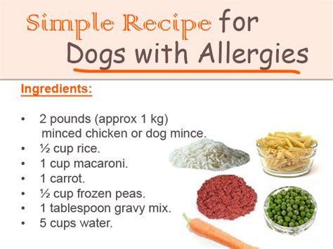simple recipe  dogs  allergies flickr photo