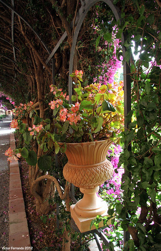 Jardines de Monforte - Valencia