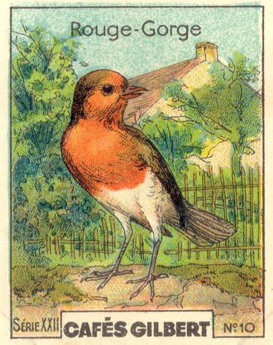 gilbert oiseau 9