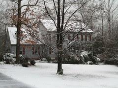 snowy day by Teckelcar