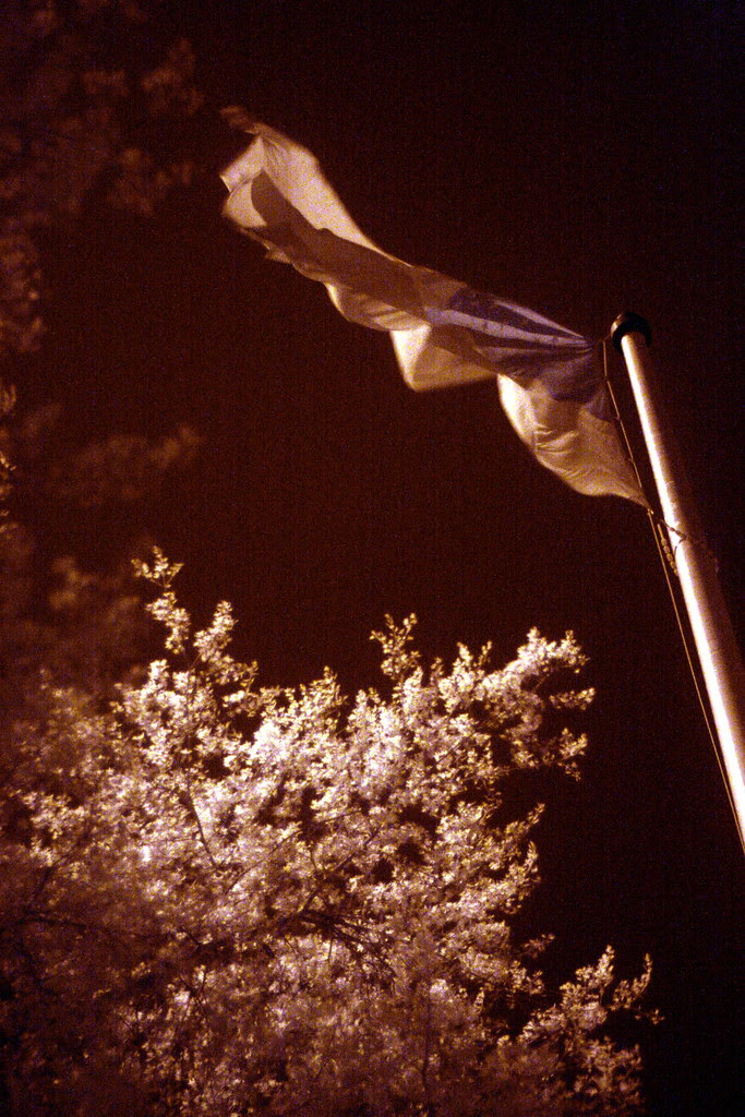 waterfront flagpole (infrared)