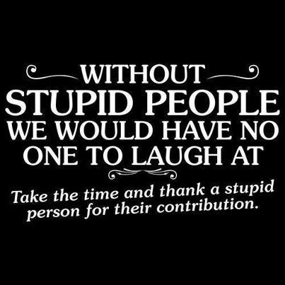 Quotes About Stupidity 538 Quotes