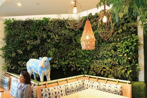 How Much Does a Living Wall Cost?   Living Walls