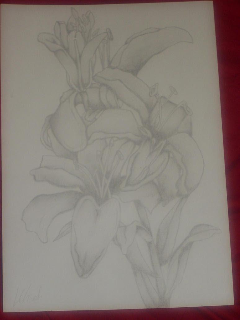 Como Dibujar Un Ramo De Flores A Lapiz Imagui