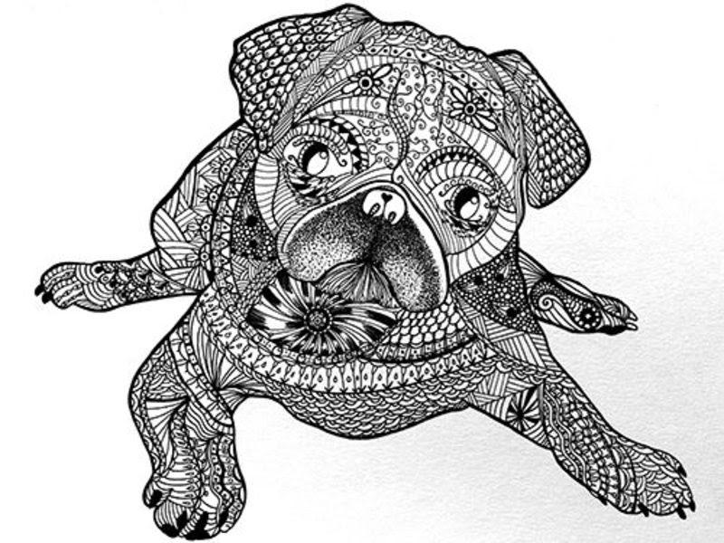 ausmalbilder zum ausdrucken kostenlos hunde
