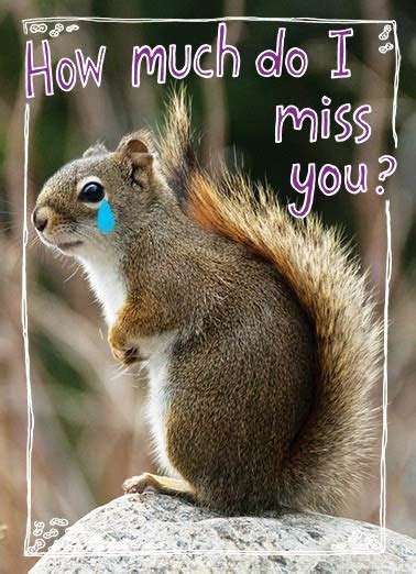 Funny Miss You Ecards   CardFool
