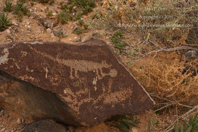 Petroglyph NM glyphs 01