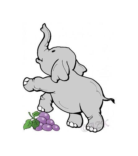 elephant_grapes