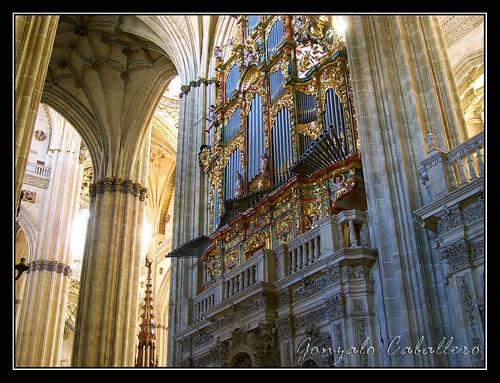 Organo de Evangelio de la Catedral Nueva de Salamanca - Fachada de la nave
