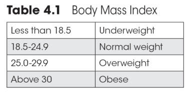 rough estimate of body fat percentage