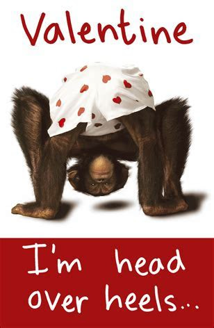 Chimp I'm Head Over Heels In Love With You Valentines Day