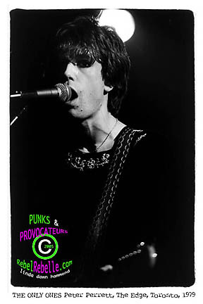 THE ONLY ONES  Peter Perrett