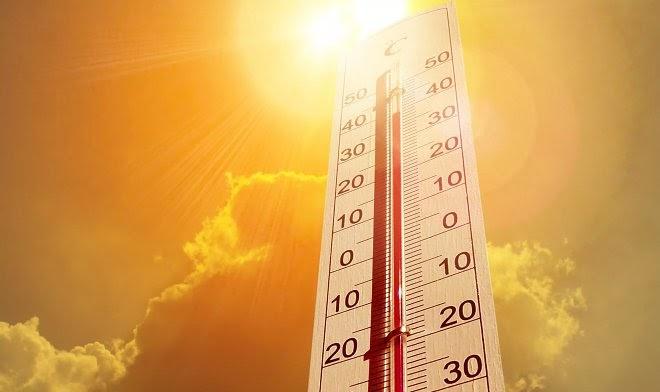 Июль 2021 года стал самым жарким месяцем за все время наблюдений за погодой