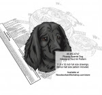 Picardy Spaniel Dog Scrollsaw Intarsia Woodworking Pattern - fee plans from WoodworkersWorkshop® Online Store - Picardy Spaniel Dogs,pets,animals,dog breeds,yard art,painting wood crafts,scrollsawing patterns,drawings,plywood,plywoodworking plans,woodworkers projects,workshop blueprints