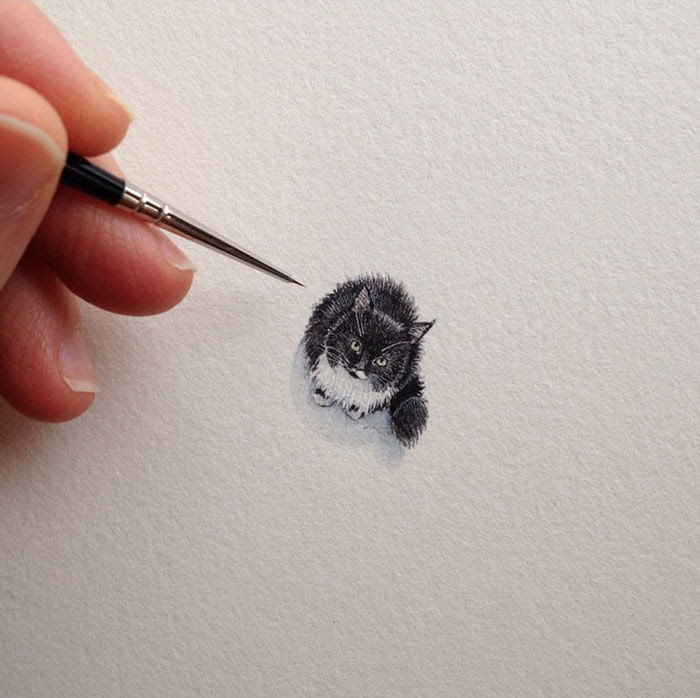 pinturas-miniatura-diarias-brooke-rothshank-portada
