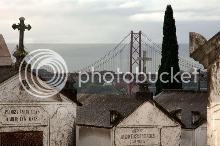 photo _ponte_zpscbf4157b.jpg