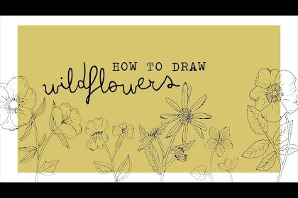 Aesthetic Simple Flower Drawing Tumblr