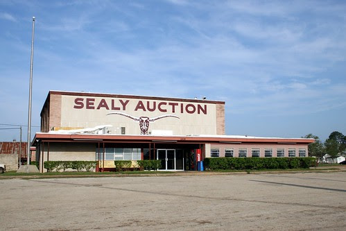 sealy auction/port city stockyards in sealy